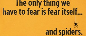TEXT: The only thing we have to fear is fear itself... and spiders.